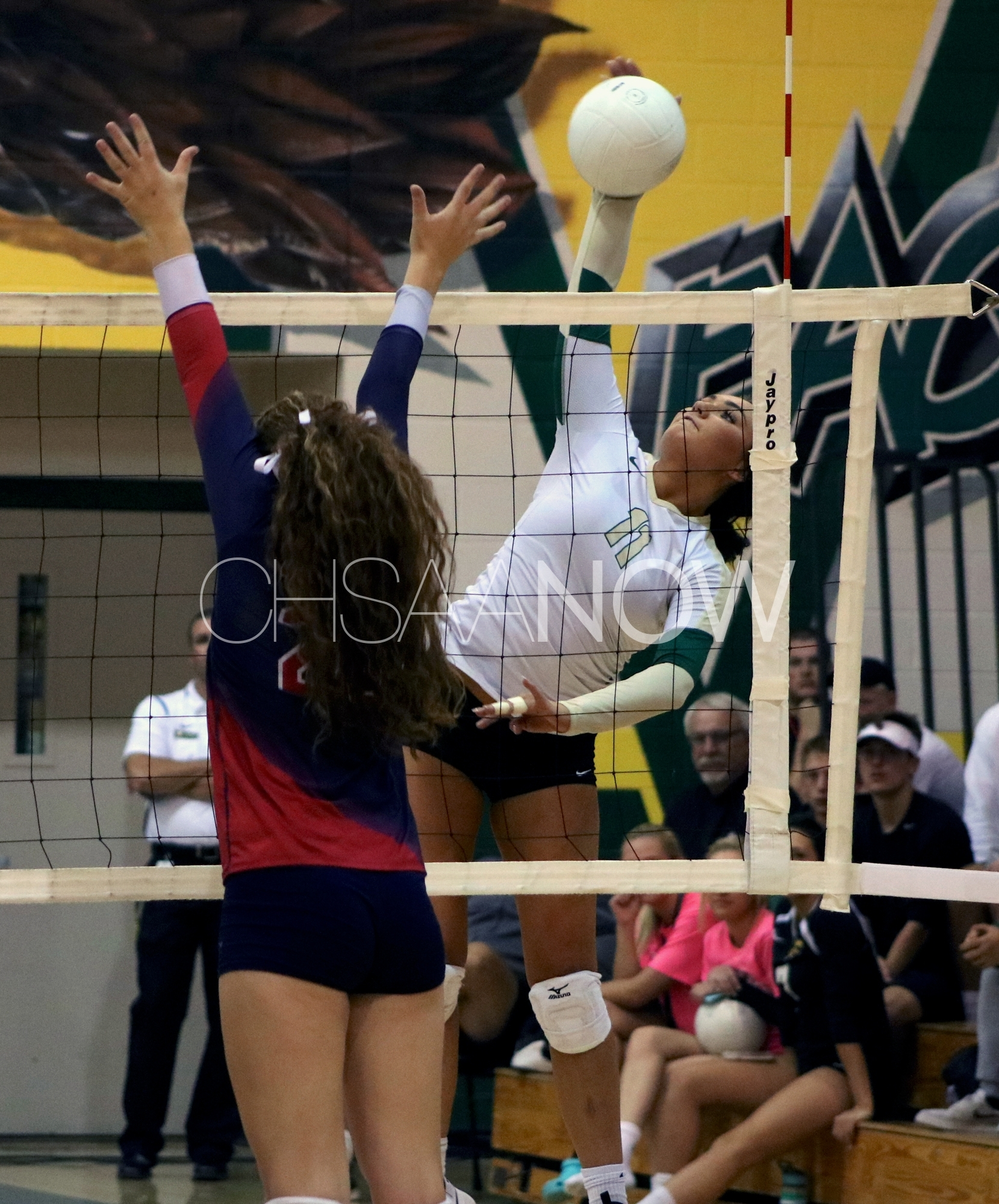Mountain Vista Wins Top-10 Volleyball Match Vs. Chaparral